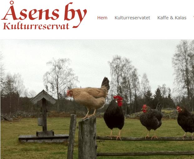 Åsens by ett naturreservat med anor från 1900-talets början