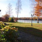 autumn image on the garden